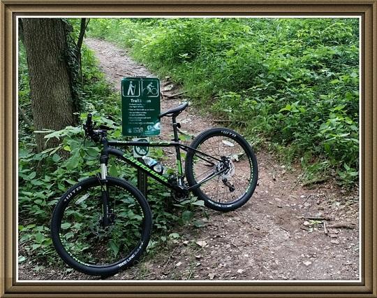 Mtn_bike2